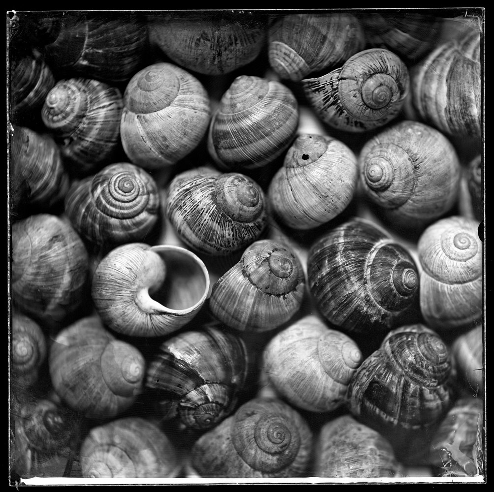 Untitled, © Peter Eleveld, Olst, Netherlands, Still Life Category, Rangefinder Fine Art Contest