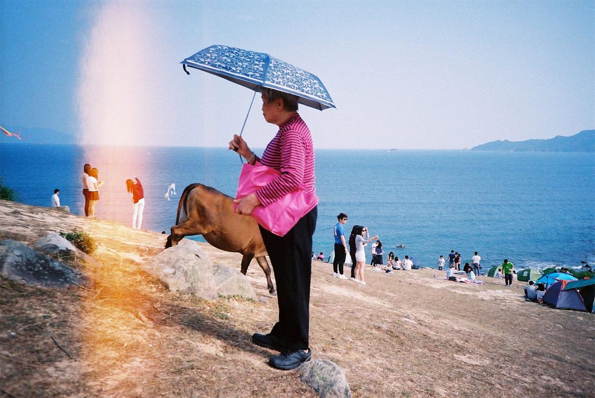 Hide & Seek : the woman & the cow, © Romain Barthe (Hong Kong), Renaissance Photography Prize