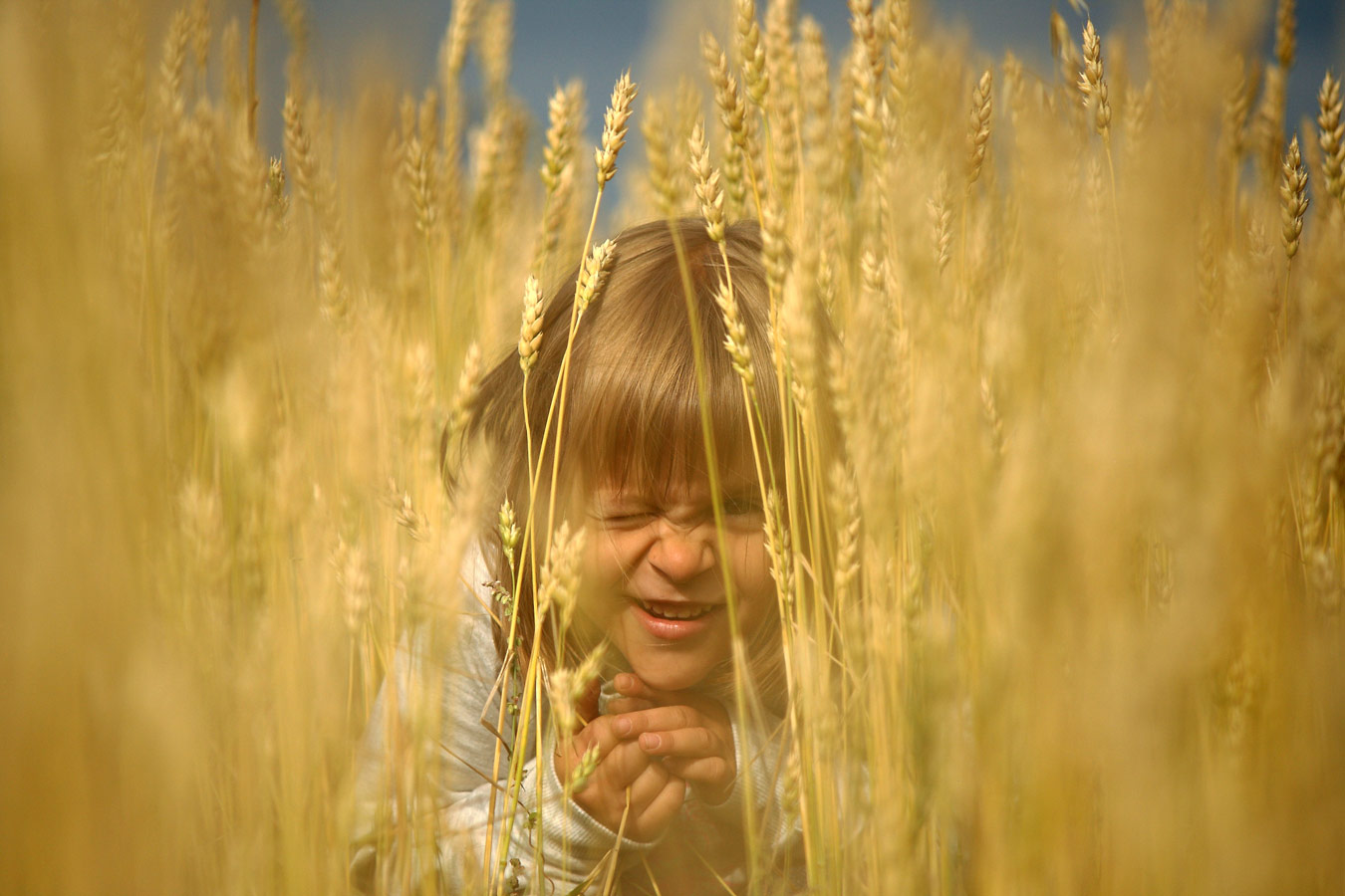 "Games in a Wheat Field, Omsk region, © Anna Ryzhkova, 2nd place, ""Russian Civilization"" International Photo Contest"