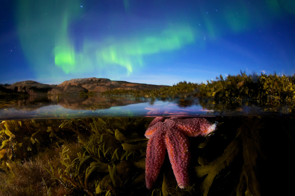 "Star of the North, © Egor Nikiforov, Winner in category From Sunset To Dawn, ""Most Beautiful Country"" Photo Contest"