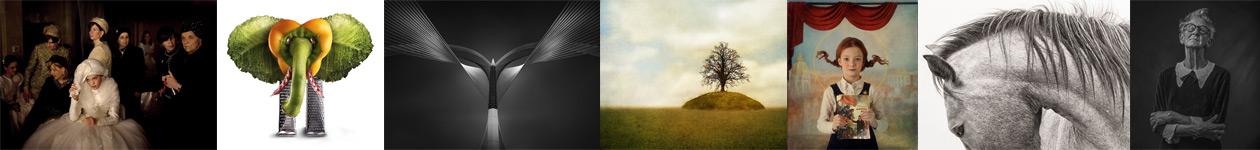 Creative Photo Contest - Siena Awards