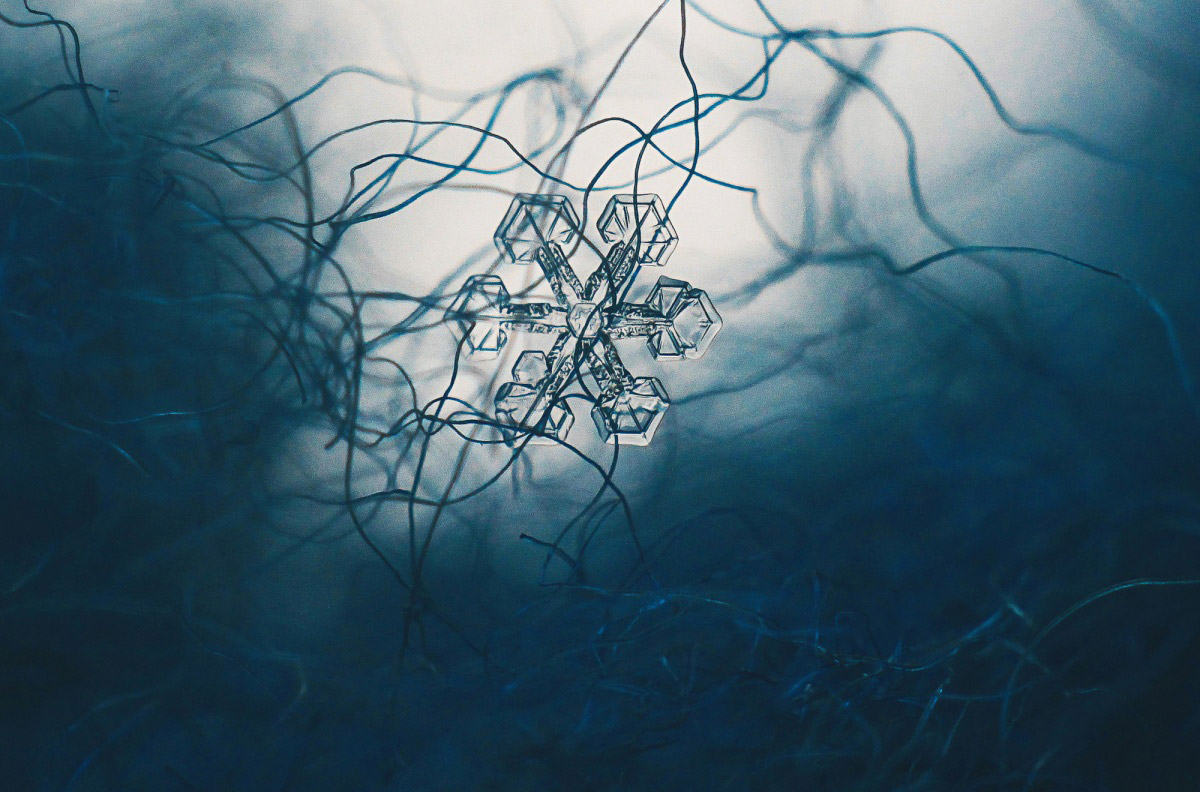 Snowflake, © Evgeniya Frolova, Finalist in the nomination Microcosm, Science Elements Photo Contest