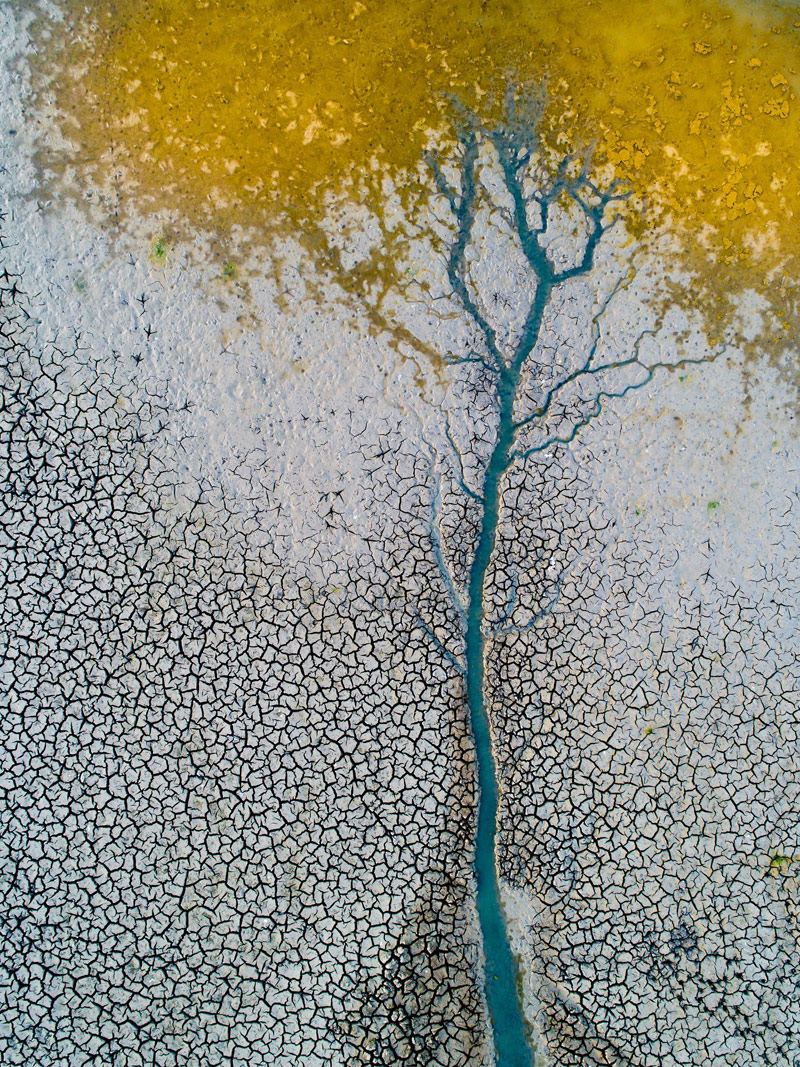 © Kirják József, Hungary, Water Streamelt, 1st place, TransNatura International Nature Photo Contest