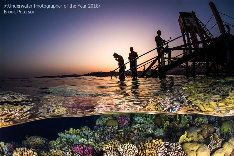 Evening Snorkel, © Brook Peterson, USA, Wide Angle Third, Underwater Photographer of the Year