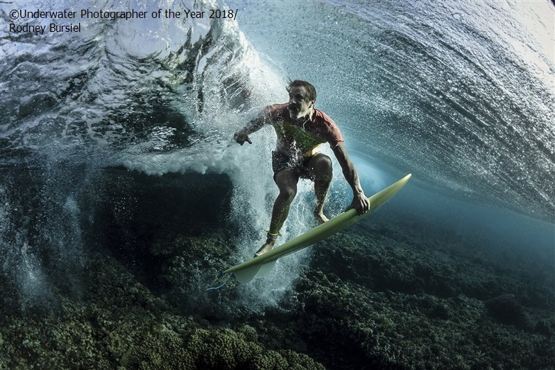 Under The Wave, © Rodney Bursiel (USA), Portrait Third, Underwater Photographer of the Year