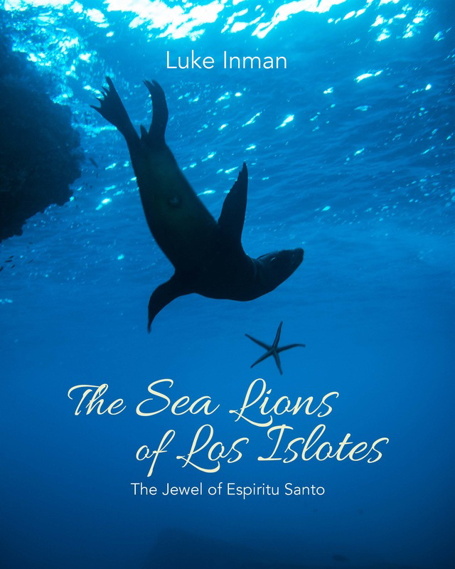 The Sea Lions of Los Islotes - The Jewel of Espiritu Santo, © Luke Inman, Underwater Photography Book of the Year Runner Up, Underwater Photographer of the Year
