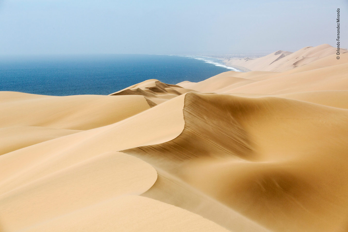 Earth's Environments Category Winner, Windsweep, © Orlando Fernandez Miranda, Spain, Wildlife Photographer of the Year