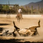 Charros – Mexican Horsemen, © Anja Bruehling, Chicago, IL, United States, First Place, World In Focus - The Ultimate Travel Photography Competition