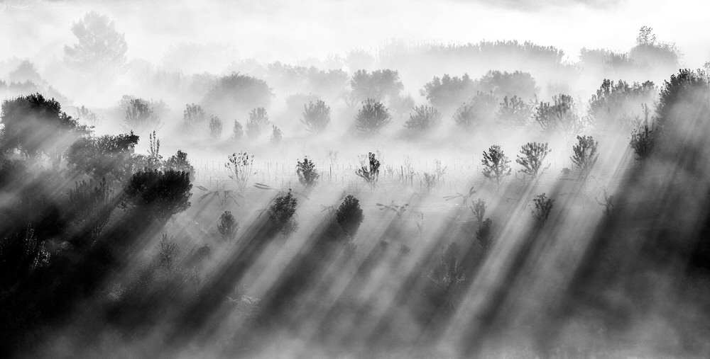 Rank #10 (34 Points), © Adolfo Enriquez, Santiago De Compostela, Spain, World's Top 10 Black & White Photographers - Photo Contest