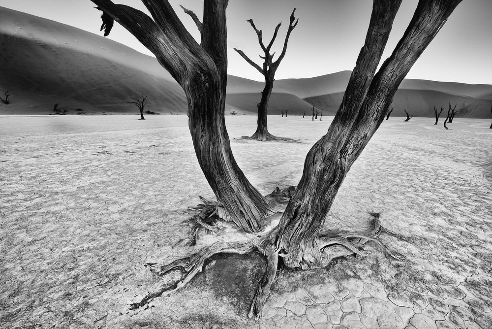 Rank #3 (57 Points), © Trevor Cole, Dunfanaghy, Ireland, World's Top 10 Black & White Photographers - Photo Contest