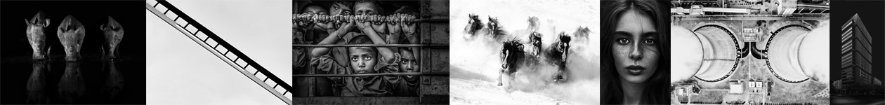 Zebra Awards - Black and White Photographer of the Year